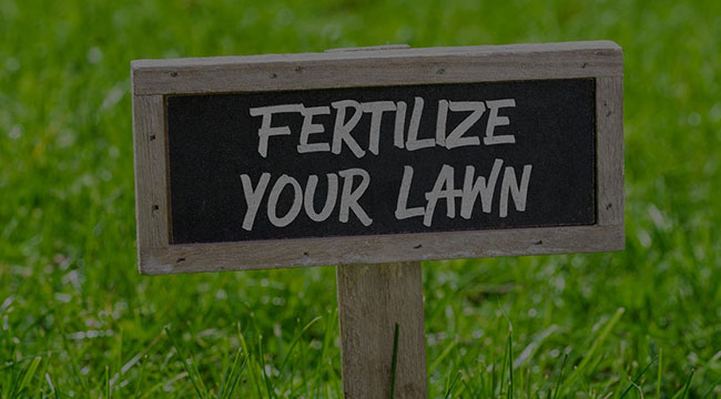Douglasville Fertilization
